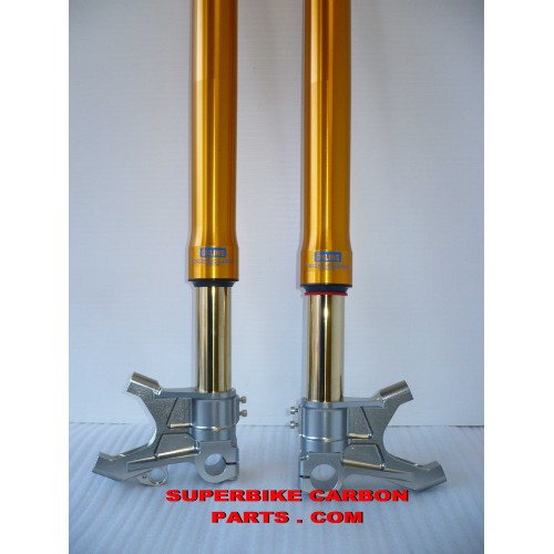 DUCATI 999 R/S 749 R: FORCELLE OHLINS NIX 30 SPECIALI